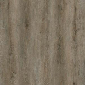 Canadian Oak Medium OFL_070_012
